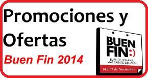 Buen Fin 2014